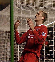 Photo: Jed Wee.<br />Liverpool v Charlton Athletic. The Barclays Premiership. 04/03/2006.<br />Liverpool's Peter Crouch rues a missed chance.