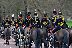 © Licensed to London News Pictures. 06/02/2013. London, UK The troop head to Green Park. The King's Troop Royal Horse Artillery, wearing immaculately presented full dress uniform, provide a colourful spectacle as they ride past Buckingham Palace today, 6th February 2013, to Green Park to stage a 41 Gun Royal Salute marking the 61st Anniversary of the Accession of Her Majesty The Queen. Photo credit : Stephen Simpson/LNP