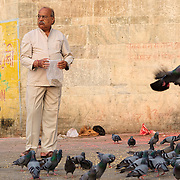 Feeding pigeons at Lal Ghat