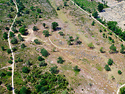 Nederland, Overijssel, Gemeente Hellendoorn; 21–06-2020;  Nationaal Park Sallandse Heuvelrug, Holterberg tussen Nijverdal en Holten. Schaapskudde,<br /> <br /> luchtfoto (toeslag op standaard tarieven);<br /> aerial photo (additional fee required)<br /> copyright © 2020 foto/photo Siebe Swart