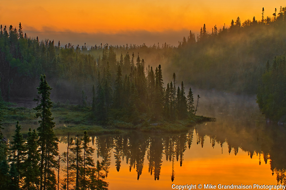 Morning fog in the boreal forest<br />Schreiber <br />Ontario<br />Canada