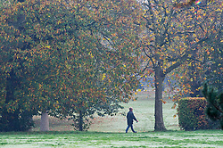 © Licensed to London News Pictures. 06/11/2020.  <br /> Greenwich, UK. People get out and about in Greenwich Park, London to make the most of their lockdown exercise on a cold November morning.  Photo credit:Grant Falvey/LNP
