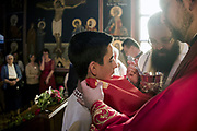 Rites of passage Communion Serbian Orthodox Church Sydney.