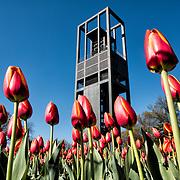 Netherlands Carillon   Arlington VA
