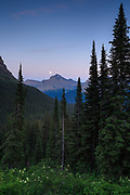 Early morning in Glacier National Park.