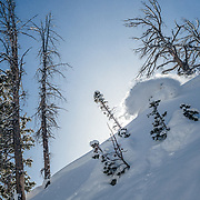 Tanner Flanagan skis backlit powder in the backcountry near Jackson Hole Mountain Resort.