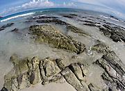 Andaman Islands - coral reef