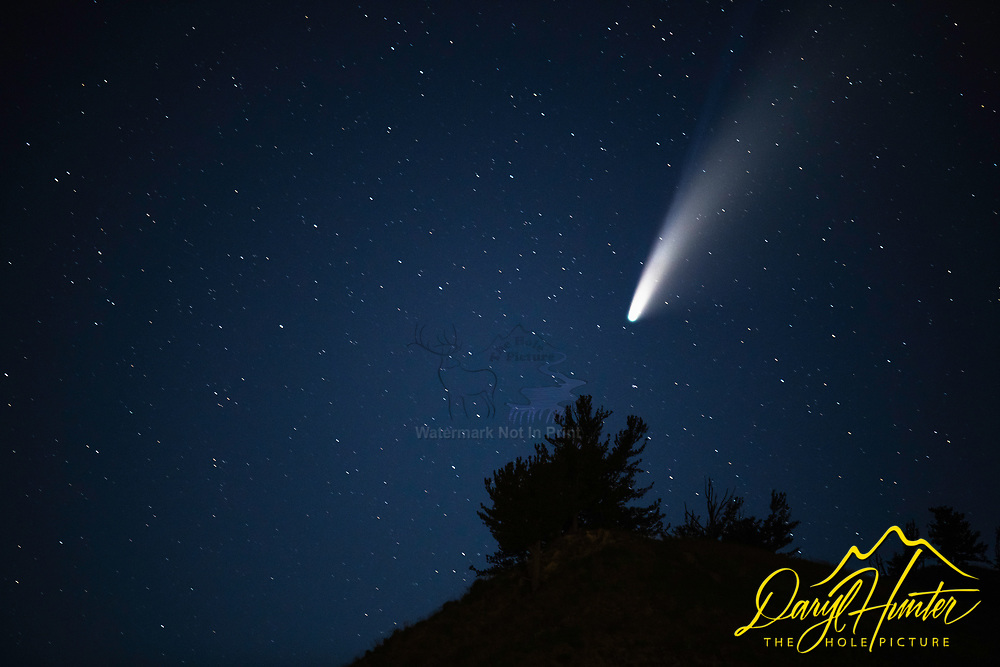 Neowise Comet over Wyoming