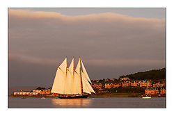 Shenandoah, a three masted Schooner arrived at the Fife regatta in Rothesay Bay. The 1902 boat, which is not a Fife design was recently refurbished and is travelling the world...This the largest gathering of classic yachts designed by William Fife which participated in the Fife Regatta which finishes tommorow with a race through the Kyles and ending in Largs....FAO Pictures..Marc Turner / PFM Pictures
