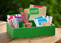 Green wooden seed tidy with labels and seed packets