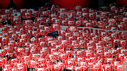 Red Star Belgrade fans show support for their team in the stands