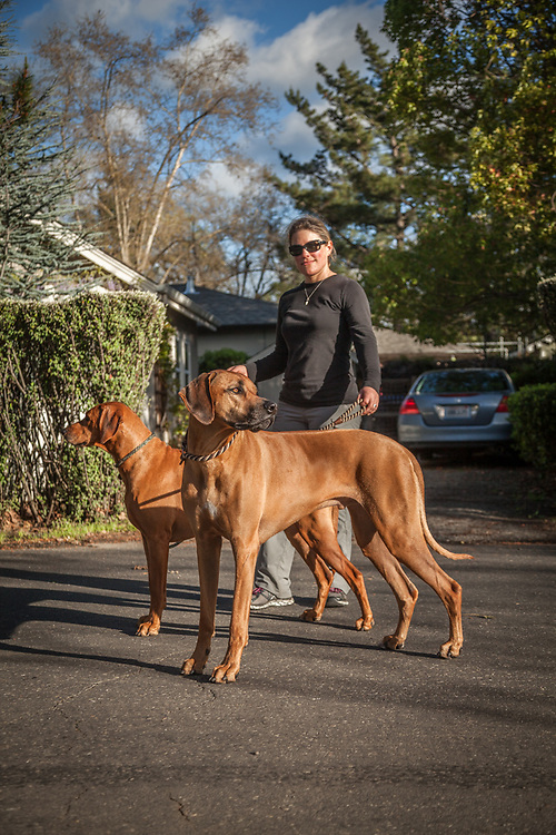 """Jennifer Tisa with her Rhodesian Ridgebacks, Flash and Sue, while on a walk in Calistoga.  """"I owned a restraunt in downtown Calistoga...I sold it about two years ago...one more item off my bucket list."""""""