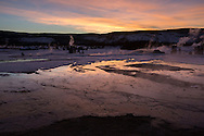Dusk light reflected in geothermal features, bison grazing in background, Yellowstone National Park