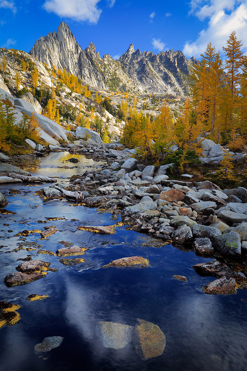 """Tamaracks and Prussik Peak in Washington's Enchantment Lakes wilderness area<br /> .....<br /> The Enchantments is an area comprising an upper and a lower basin, the lakes and tarns contained within them, and the peaks of the Stuart Range bounding the basins. The area is located entirely within the Alpine Lakes Wilderness about 15 miles southwest of Leavenworth, Washington in the United States. The Enchantments is regarded as one of the most spectacular locations in the Cascade Range. The first European American to discover the area and name it was A.H. Sylvester, topographer for the US Geological Survey and first supervisor of the Wenatchee National Forest. Sylvester visited the middle Enchantment basin and probably did not venture into the upper basin. Snow Creek Glacier covered more of the upper basin at the time than it does today, which may have discouraged him from exploring the higher areas. He is credited with naming some of the features in the region.<br /> <br /> By the 1940s climbers discovered the area and began naming the crags. Bill and Peg Stark of Leavenworth, became frequent visitors who drew upon various mythologies to name features of the landscape. When they made their first visit in the fall of 1959, they were captivated by the golden splendor of the larch trees in the fall, the numerous lakes and tarns, and jagged peaks towering above. They used fairy names such as Gnome Tarn, Troll Sink, Naiad Lake (officially Temple Lake), Sprite and King Arthur legends in the Lower Enchantment Basin because """"the lower basin was not as austere as the upper basin,"""" according to Peg. They used Norse names and mythology for features of the upper basin, for example Brynhild Lake (officially Inspiration Lake), Lake Freya (officially Tranquil Lake), and Valhalla Cirque because, Peg said, it felt """"as if the Ice Age had just gone off.""""<br /> <br /> The official naming rulings of the US Board on Geographic Names in the 1960s resulted in a mixture of two name sets bein"""