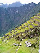 Agricultural terraces at the Incan ruins of Machu Picchu, near Aguas Calientes, Peru.