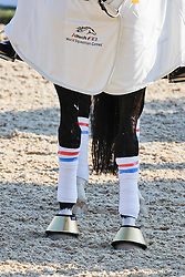 Details - legs<br /> Alltech FEI World Equestrian Games <br /> Lexington - Kentucky 2010<br /> © Dirk Caremans