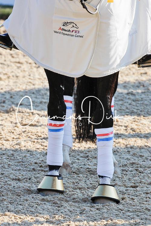 Details - legs<br /> Alltech FEI World Equestrian Games <br /> Lexington - Kentucky 2010<br /> © Dirk Caremans