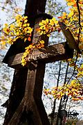 Cmentarz Zasłużonych na Pęksowym Brzyzku - górb Karola Stryjeńskiego, Zakopane