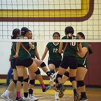 Wingate Bears celebrate after winning the first set 25-11 against the Cougars, in Tohatchi on Tuesday.