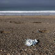 A discarded mask along the shoreline on Zuma beach in Malibu, California.