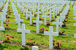 French Military Cemetary at Douaumont, Verdun, France<br /> <br /> (c) Andrew Wilson | Edinburgh Elite media