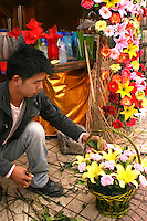 Ladies Street Flower Market - also known as Ladies Street, the Laitai Flower Market is  part of the Beijing Laitai Flower Trading Cente