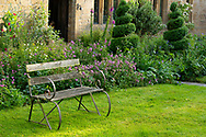 An old wood and metal bench and spiral shaped box topiary in front of the house and a border at Lower Severalls Farmhouse,  Crewkerne, Somerset, UK