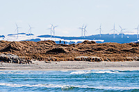 Norway, Revtangen. Wind turbines on Høg-Jæren.