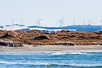 Norway, Revtangen. Wind turbines on Høg-Jæren.