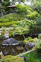 Yoshikien is named after the Yoshikigawa River that runs beside the garden.  The garden was built on the site of Kofukuji Temple's former monks' residences. There are three different gardens within Yoshikien: a pond garden, a moss garden and a tea ceremony garden.