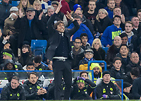 Football - 2016/2017 Premier League - Chelsea V Tottenham Hotspur<br /> <br /> <br /> Chelsea Manager Antonio Conte urges his team as the final whistle closes at Stamford Bridge.<br /> <br /> COLORSPORT/DANIEL BEARHAM