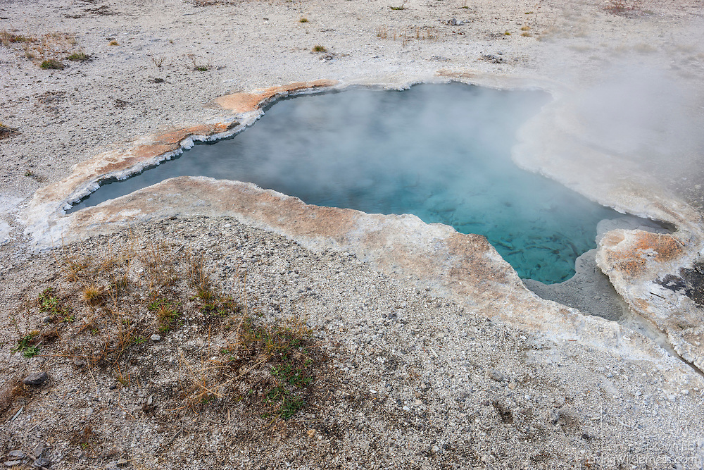 Steam rises from Blue Star Spring, a hot spring of near-boiling water in Yellowstone National Park, Wyoming. Blue Star Spring rarely erupts, but has occasionally had 1- to 2-foot-tall eruptions, most notably in 1925, 1926, 1997 and 2002.