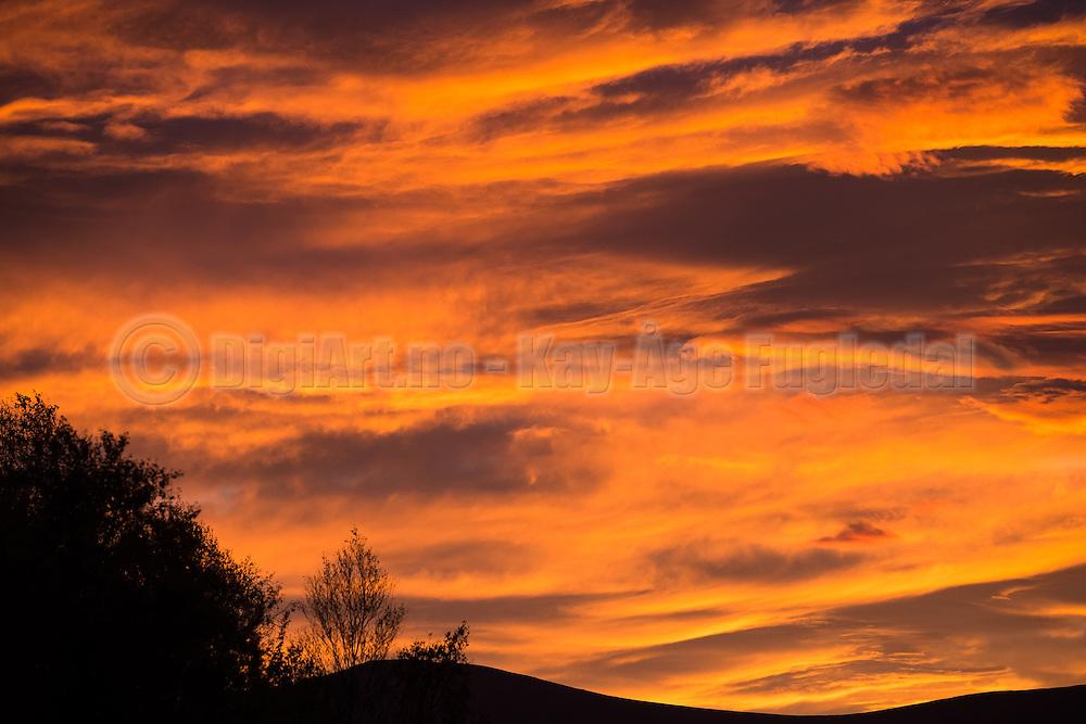 A picture from the magic sunrise on friday | Et bilde fra den magiske soloppgangen på fredag
