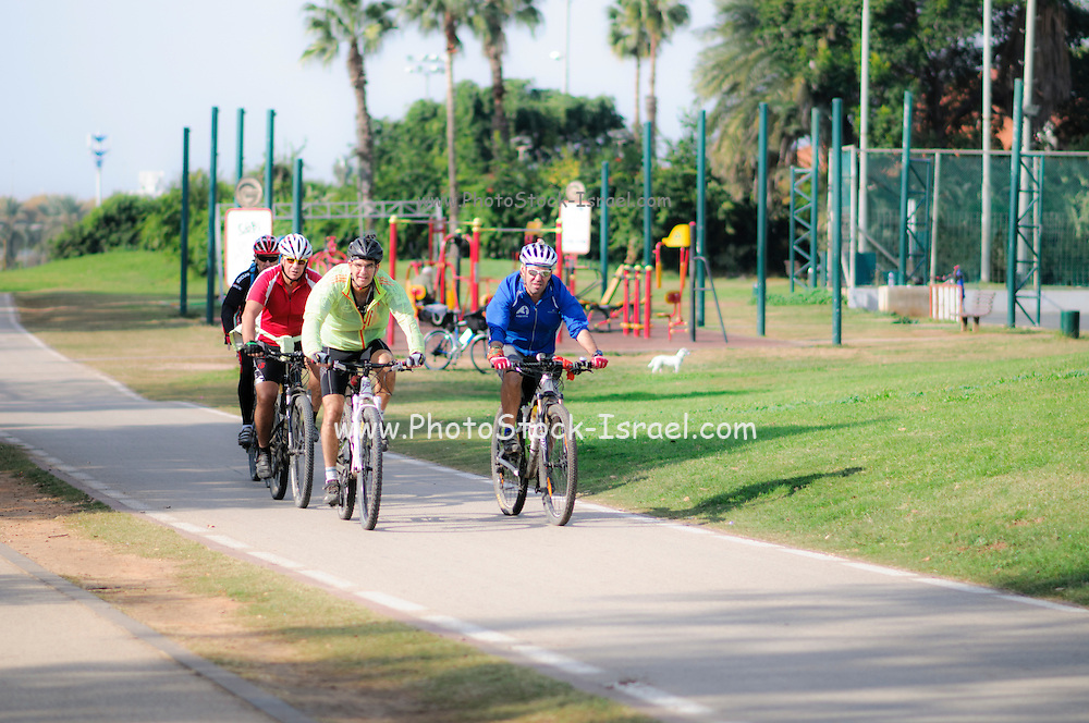 Group cycling in the park