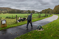 A jogger passes a field with cows, Saint-Rémy-lès-Chevreuse, France.