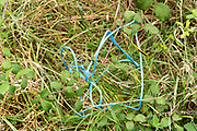 blue plastic string outside laying in the grass