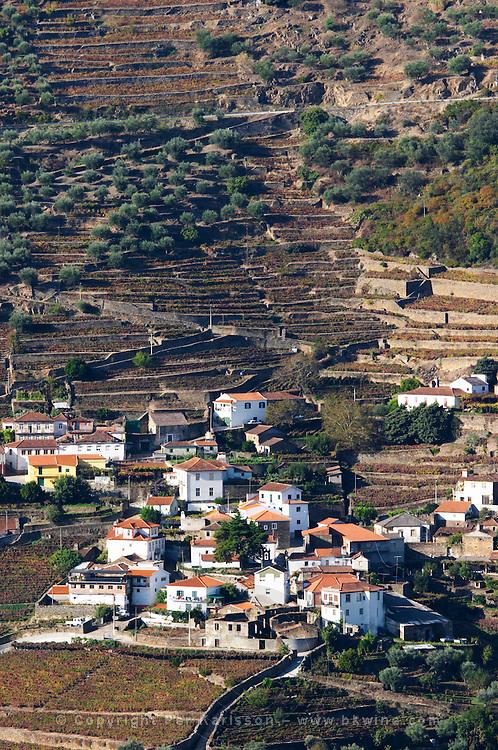 vineyards  sao cristovao do douro douro portugal