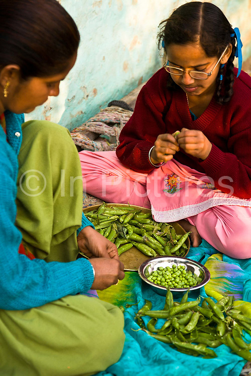 Jasbir Kaur helps her mother remove peas from their pods  in preparation for dinner in Punjab village, India