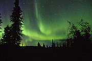 """The northern lights glow after midnight in late August at Teklanika Campground, Denali National Park and Preserve, Alaska. In 1621, Pierre Gassendi named the aurora borealis after the Roman goddess of dawn, Aurora, and the Greek name for north wind, Boreas. Published in """"Light Travel: Photography on the Go"""" by Tom Dempsey 2009, 2010."""