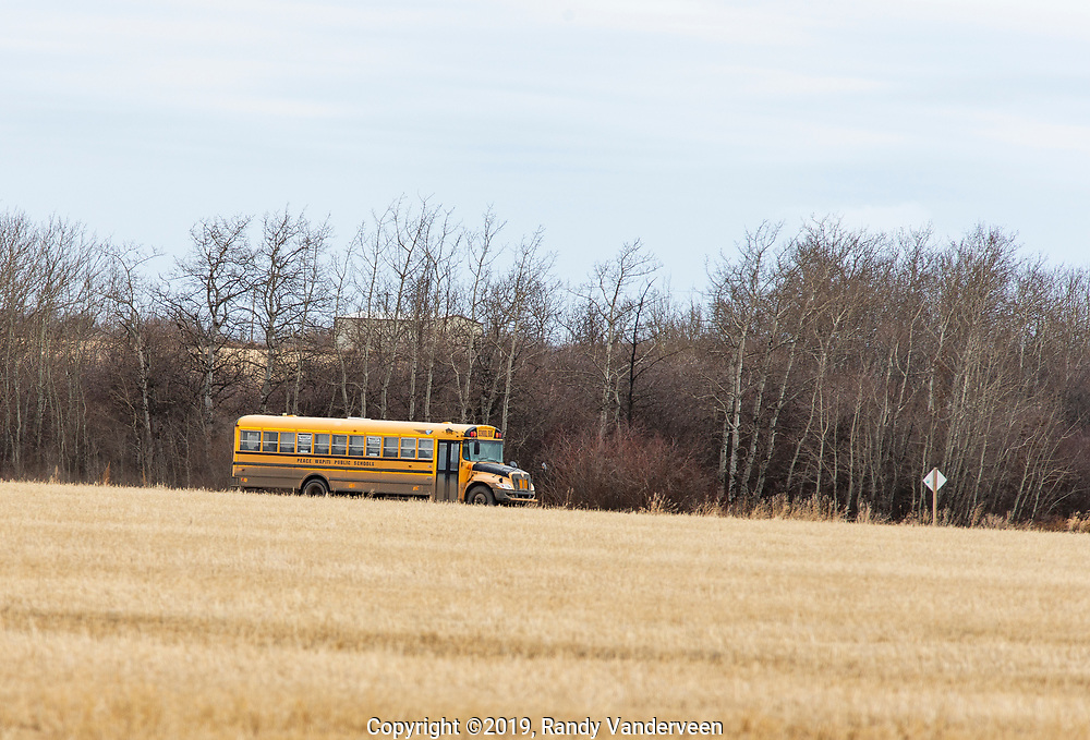 Photo Randy Vanderveen<br /> 2019-04-02<br /> Grande Prairie, Alberta<br /> A Peace Wapiti School Division bus rolls along a county road northwest of the city of Grande Prairie Tuesday, April 2. School boards across the province are being hit hard with rising transportation costs as fuel continues to rise combined with the cost of the carbon tax which applies to them like other businesses and residents of the province.