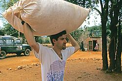 Dan Kammen Carrying Supplies
