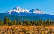 Mount Shasta During Summer