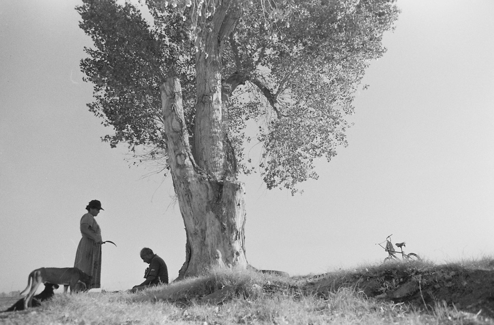 Maria and Guadalupe meet at the lone tree on their property.