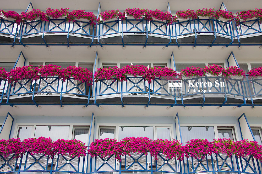 Flowers pots on balcony of traditional house, Koblenz, Germany