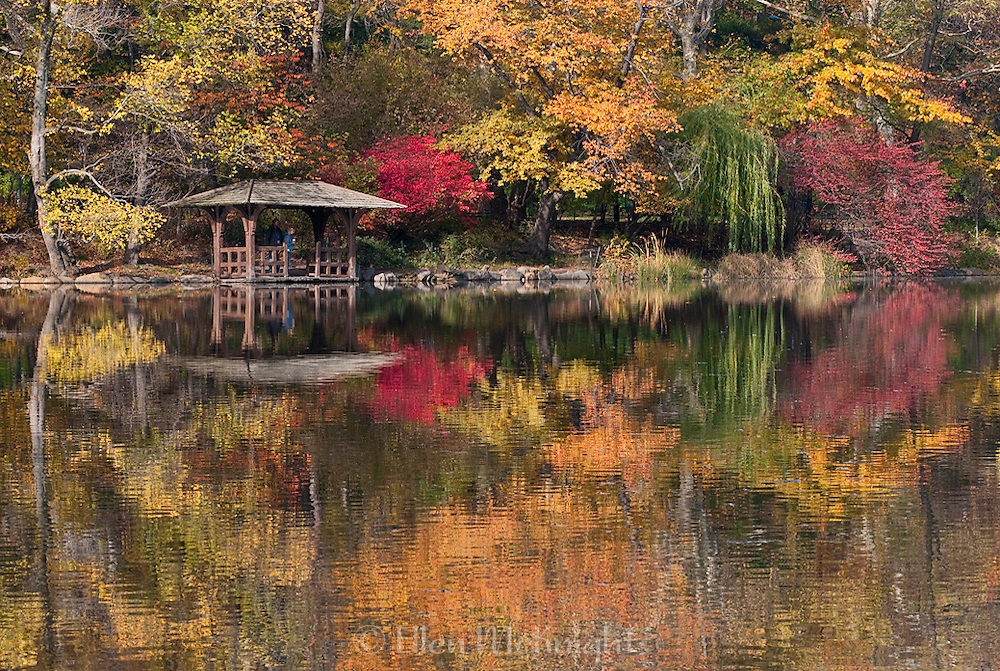 Autumn Reflections on The Lake in Central Park, New York City