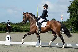 Van Liere Dinja, (NED), Hilton TC<br /> Pavo Cup <br /> Centrale Keuring Zeeland - Vrouwenpolder 2016<br /> © Hippo Foto - Dirk Caremans<br /> 02/07/16