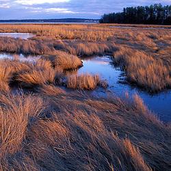 Wetlands Great Bay April. Tidal estuary.  Salt Marsh.  Great Bay  near Moody Point.  Durham, NH