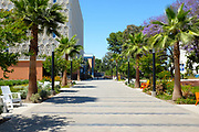 Campus Walkway Adjacent to the Pollack Library on Campus at California State University Fullerton