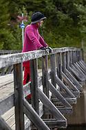 VILDMARKSVÄGEN JULI 2020<br /> Vi suger i oss intryck och vackra vyer under helgens tur efter Vildmarksvägen. Bilden från bron i Ankarede.<br /> Foto: Per Danielsson/Projekt.P
