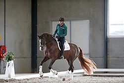 Van Lieren Laurens, (NED), Gunner<br /> Selevia Hoeve - Werkendam 2015<br /> © Hippo Foto - Dirk Caremans<br /> 18/11/15